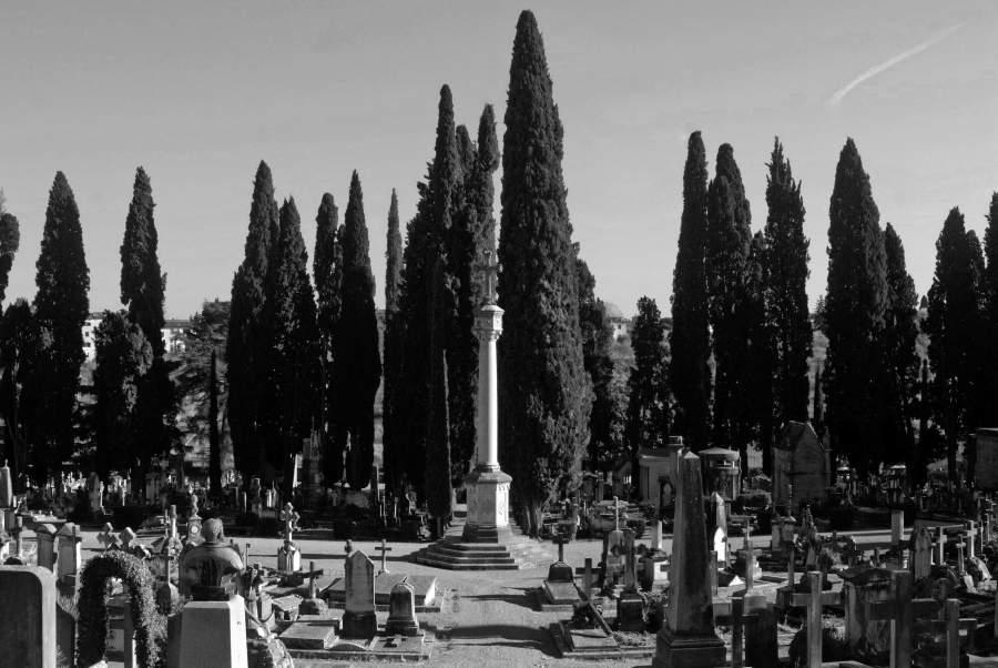 Destini incrociati nel cimitero degli allori for Zara firenze catalogo