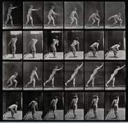 Eadweard Muybridge, A male discus thrower, 1887, 26,5 x 27,5 cm, Wellcome Library di Londra
