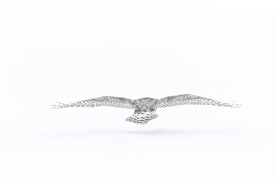 Una fotografia di Vincent Munier: «Flying snowy owl»